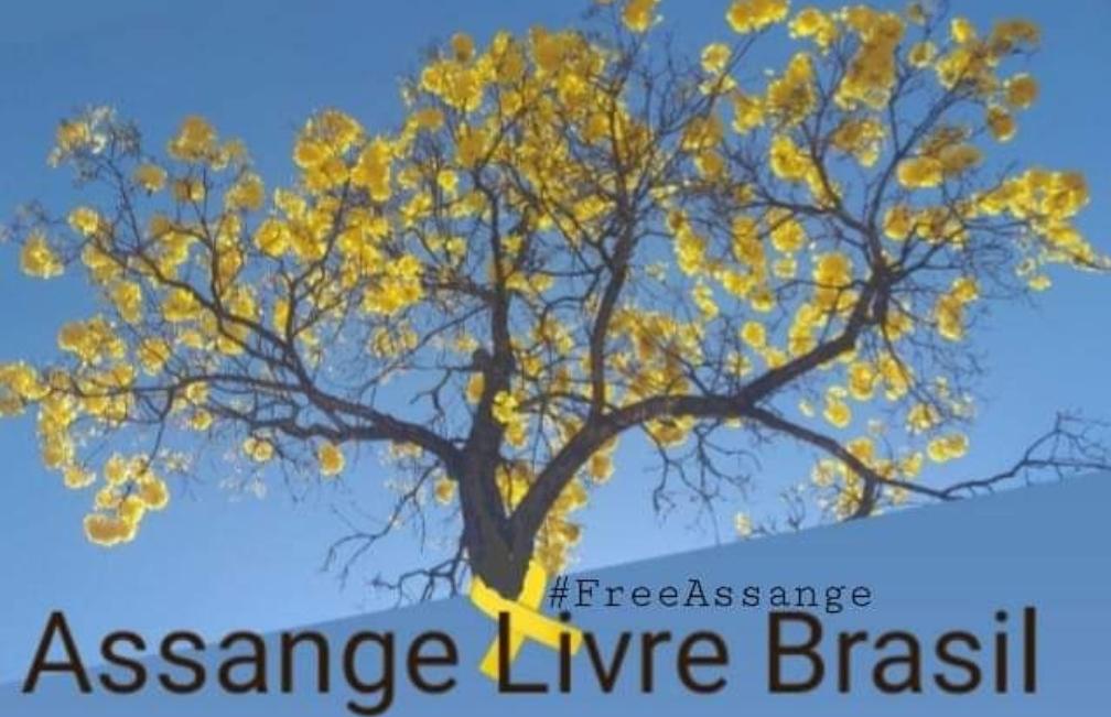 brazil-online.jpeg