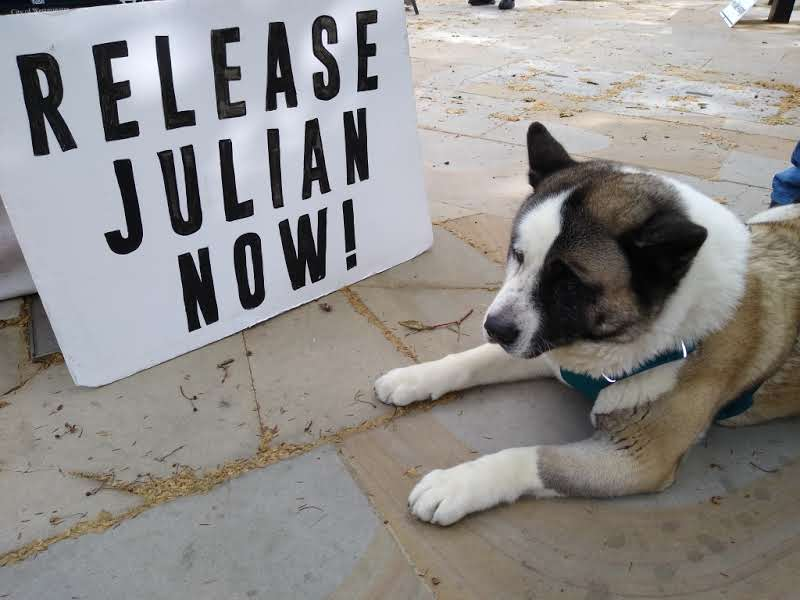 protest_photos:dogsign.jpg